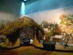 Instalación eléctrica en el Museo de Arte Rupestre Campo Lameiro